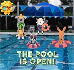 The Pool is open - picture of a pool and animals in bathing suits enjoying the day