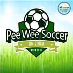 pee-wee-soccer on zoom from bay harbor islands